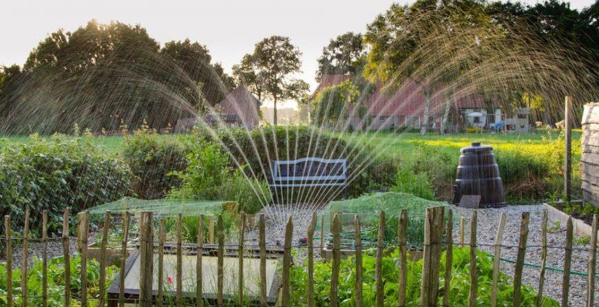 Green turf - TurfManzi Irrigation